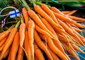 nippu porkkanoita