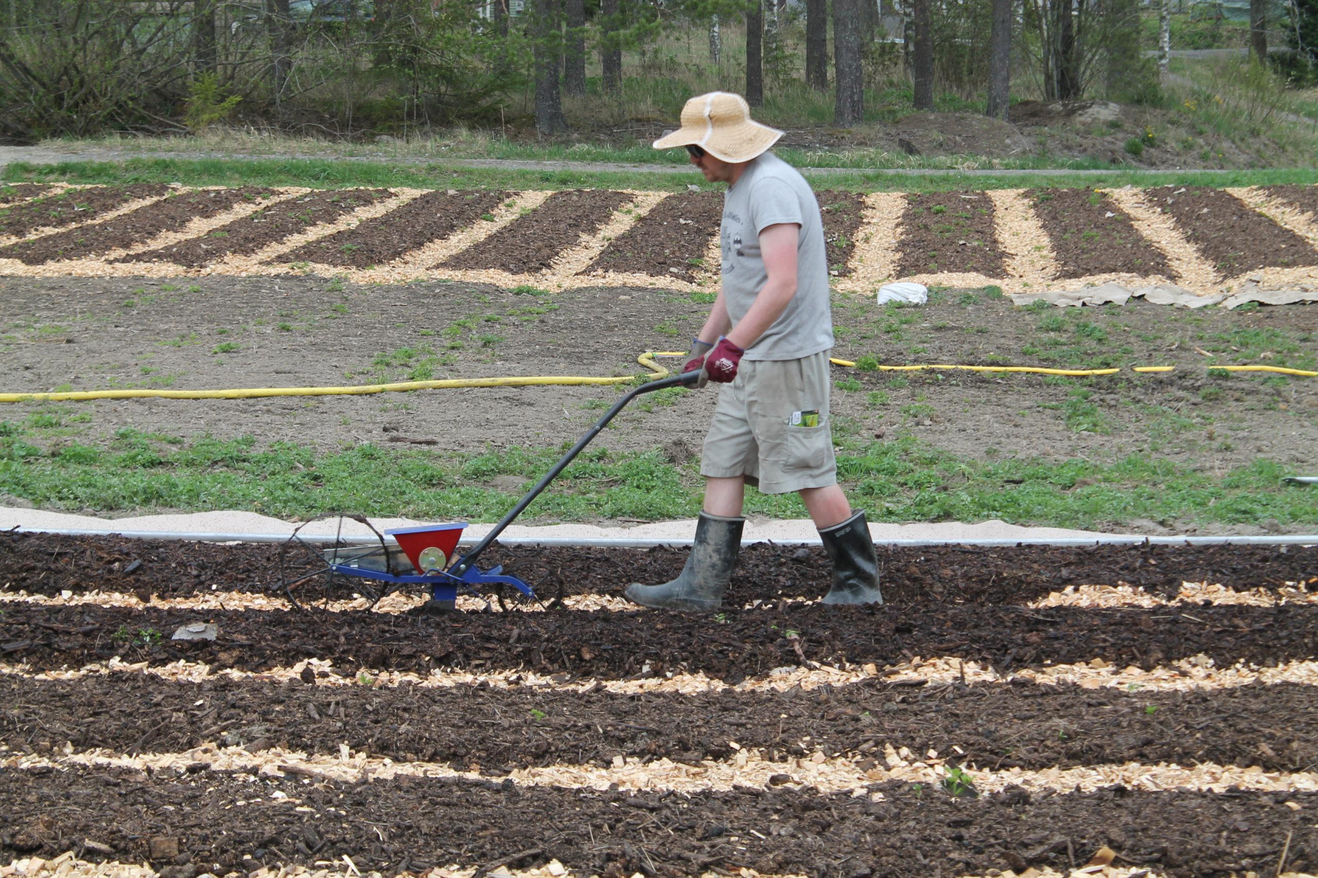 henkilö työskentelee avomaanviljelyksellä sarvitraktorilla