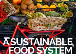 markkinapöydällä hedelmiä, etualalla punaisen polkupyörän korissa myös hedelmiä