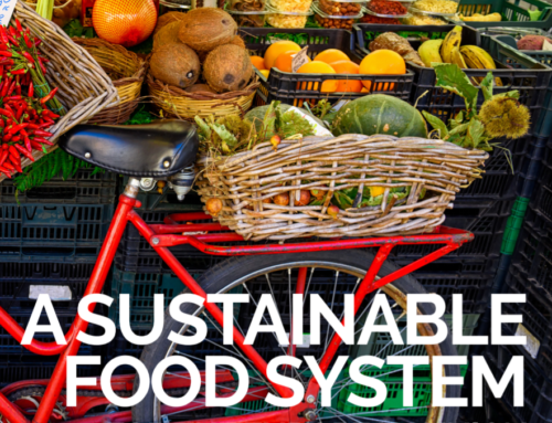 A Sustainable food system for the European Union