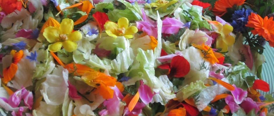 yrttisalaatti, jossa syötäviä kukkia