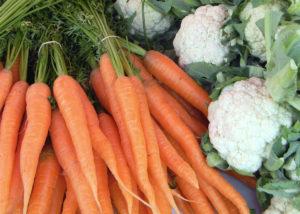 porkkananippuja ja kukkakaaleja